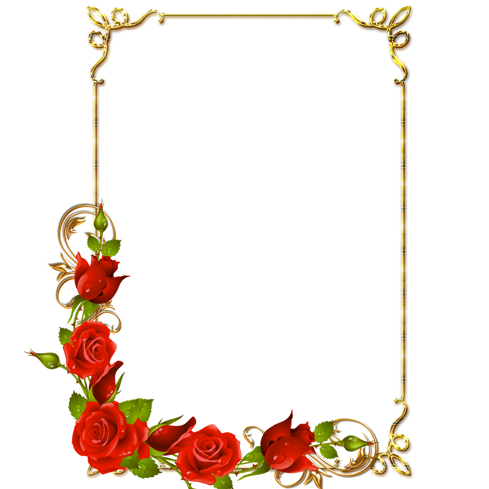 8 Flores Para Photoshop PNG Images