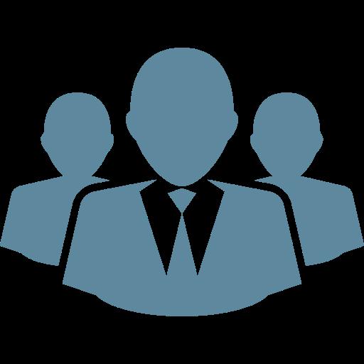 Icon Team Structure
