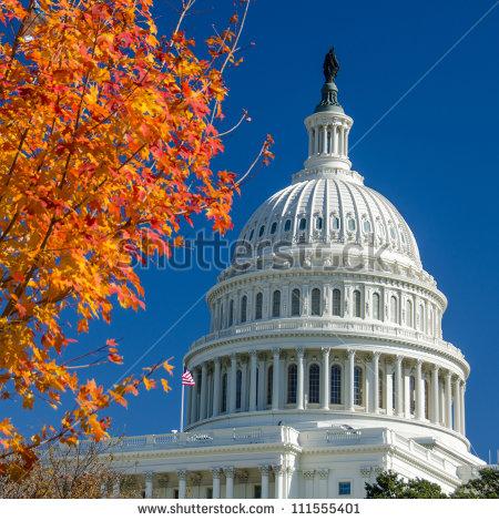 Capitol Building Washington DC Autumn