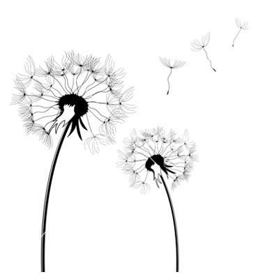 12 dandelion black and white vector art images dandelion rh newdesignfile com dandelion vector artwork dandelion vector png