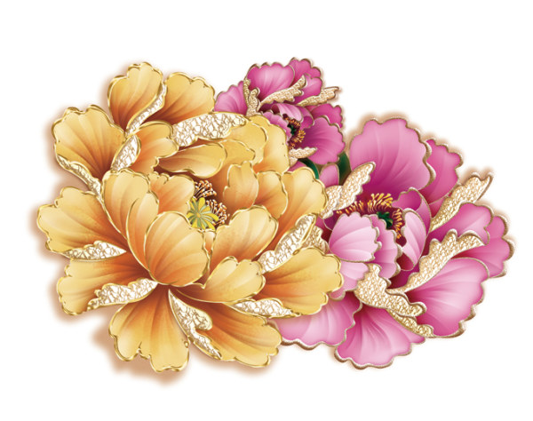 Peonies Flowers Drawing
