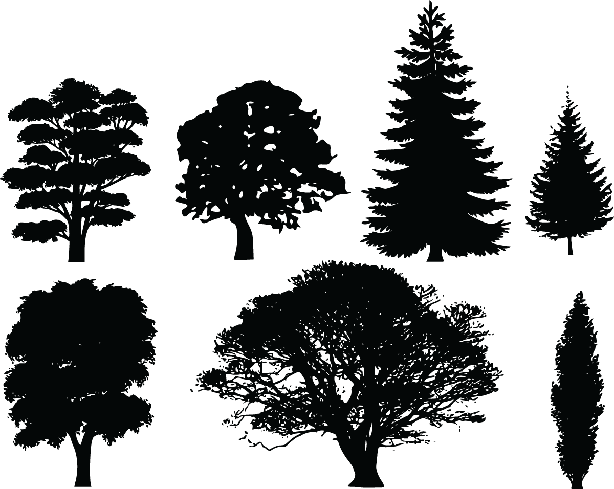 Pine Tree Silhouette Clip Art Free