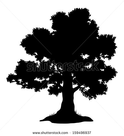 White Oak Tree Silhouette