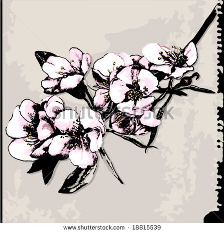 17 Apple Blossom Vector Images