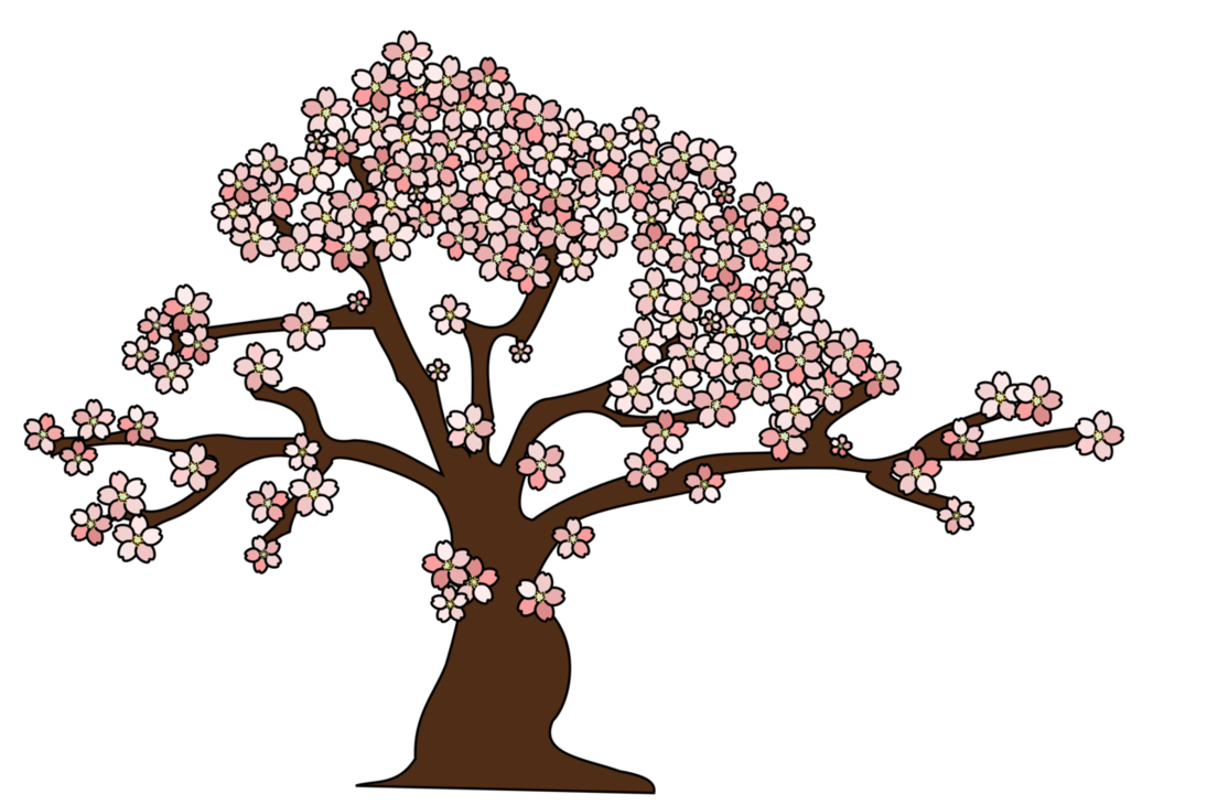 10 Cherry Tree Vector Images