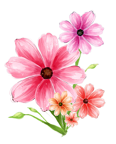9 Flower Psd File Free Download Images Free Photoshop