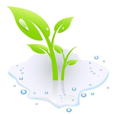 Free Plant Vector Graphics