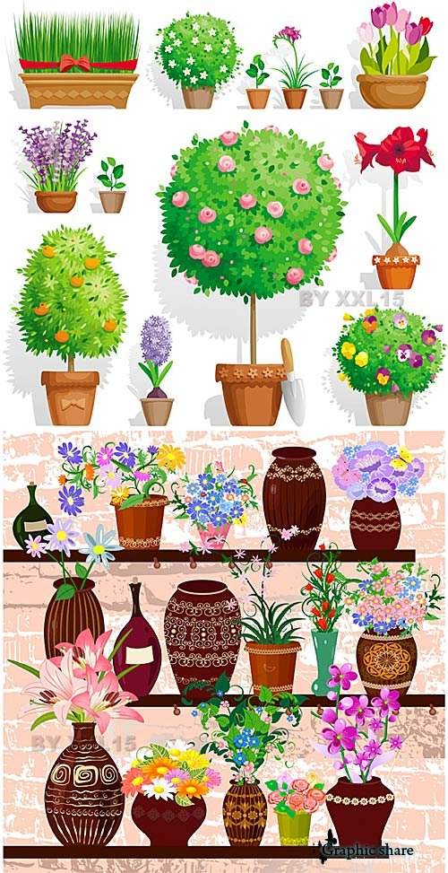 Graphic Pot Plants Pictures