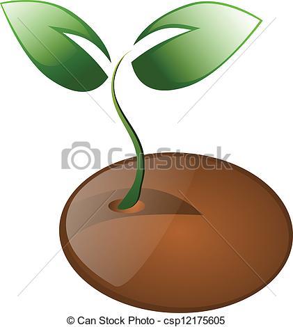 Plant Seeds Clip Art