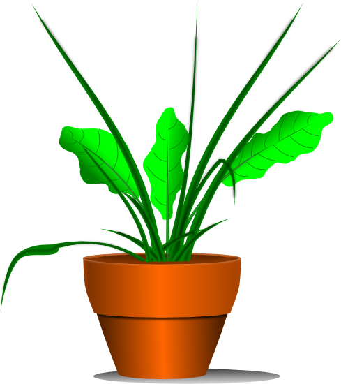 Potted Plant Clip Art