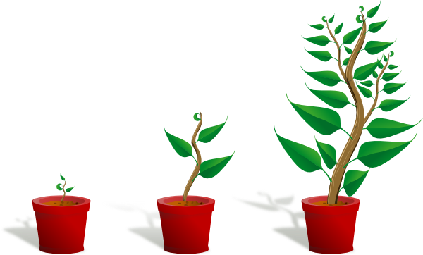 Growing Plant Clip Art