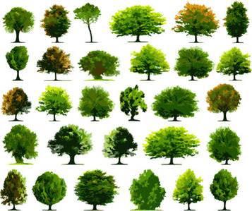 Photoshop Tree Vector