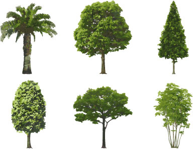 Photoshop Trees Free Download