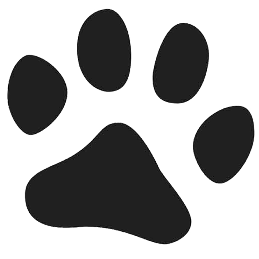 13 Animal Paw Fonts Images