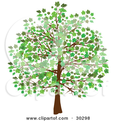 Trees Growing Leaves Clip Art