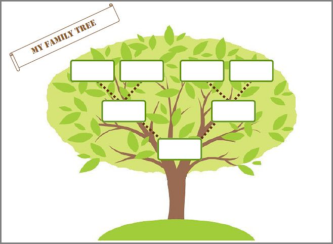 family tree organizer - Vertola