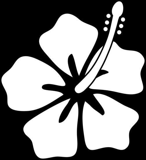 Hibiscus Flower Outline Clip Art