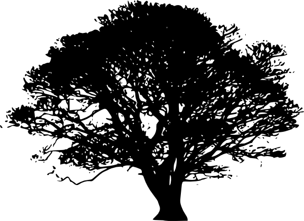 19 Oak Tree Silhouette Vector Clip Art Images