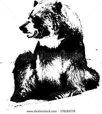 Vector Bear Head Silhouette