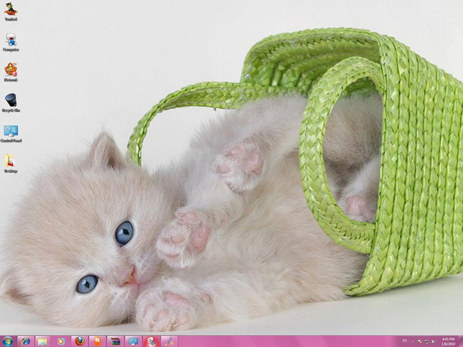 Windows 7 Themes Cats