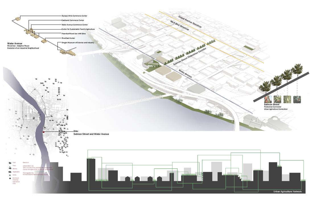 Architecture Presentation Board Layout
