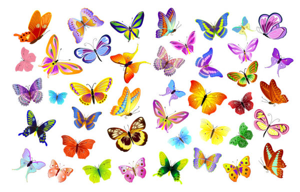 Colorful Flying Butterfly Vector