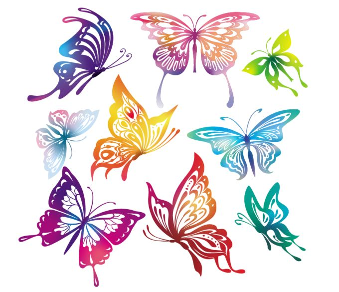 12 Butterfly Vector PSD Images