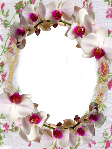 Free Flowers Graphic Frames