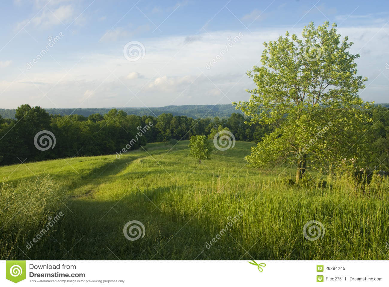 9 free vector grass hill images