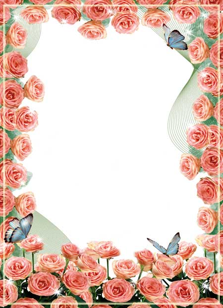 Pink Roses and Butterflies Border