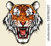 Tiger Head Clip Art Free