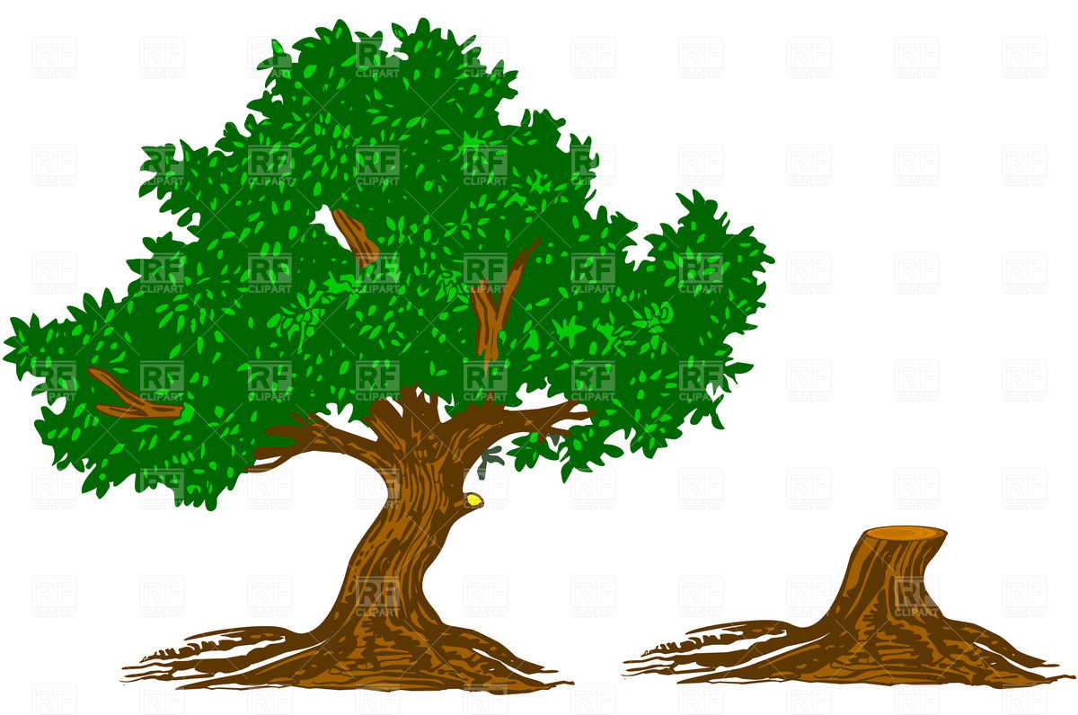 14 Tree Vector Free Download Images - Tree Silhouette ...
