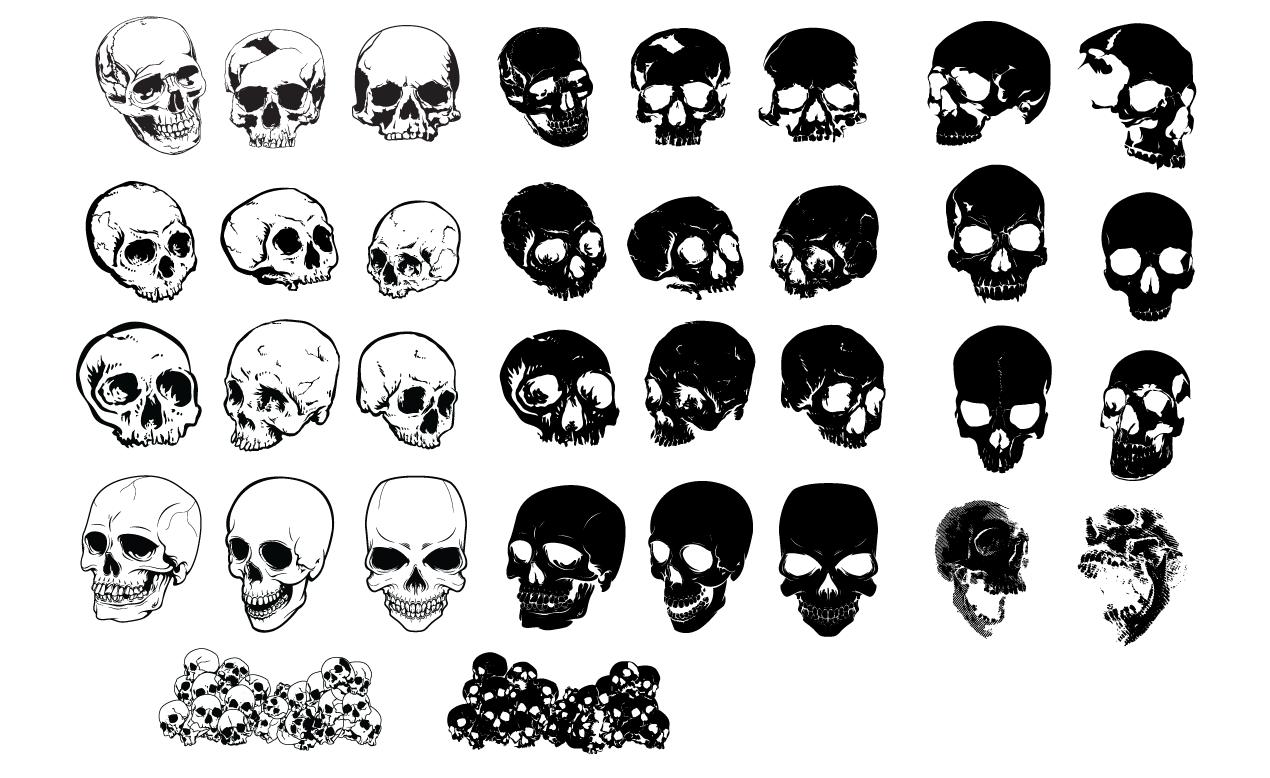 13 Skull Circle Vector Images