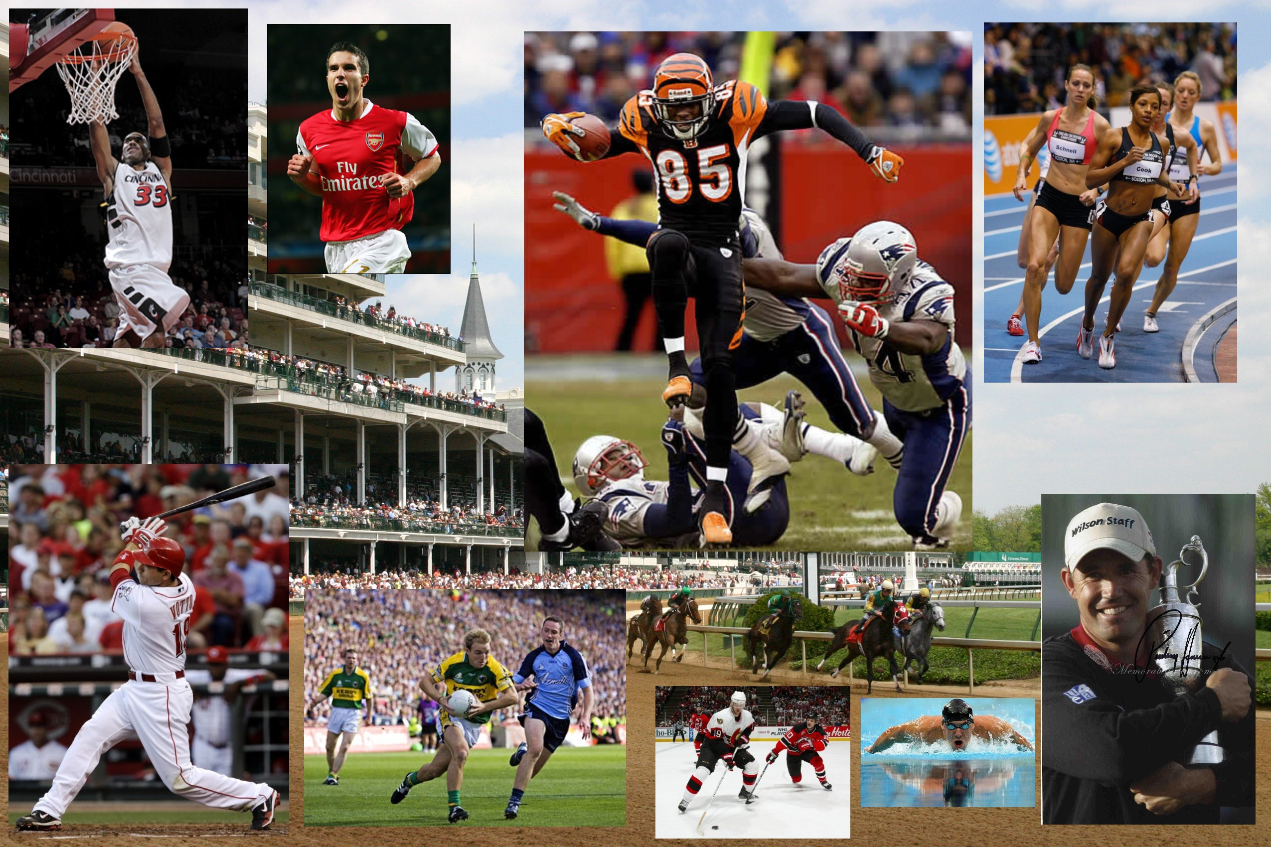 All Sports Collage