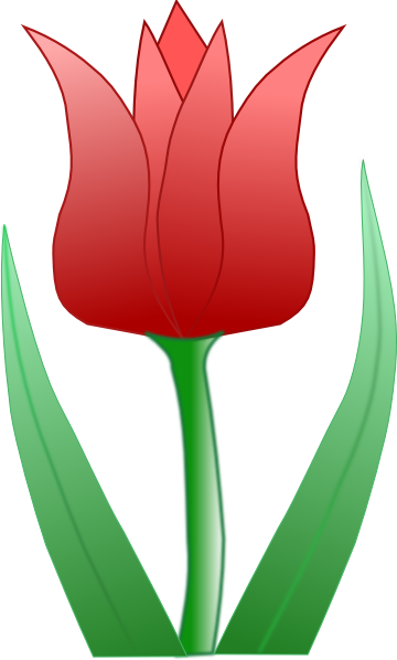 Cartoon Tulip Clip Art