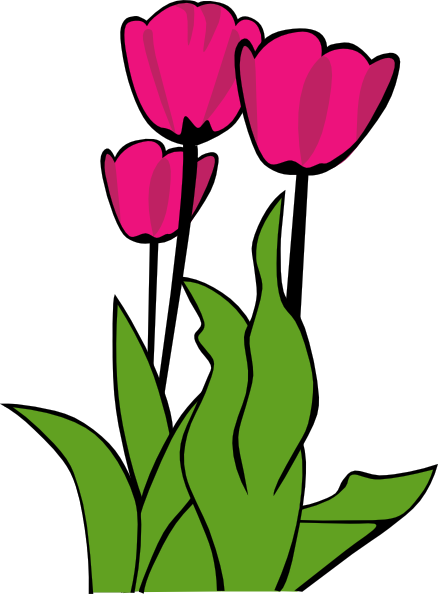 Cartoon Tulip Flower Clip Art Free