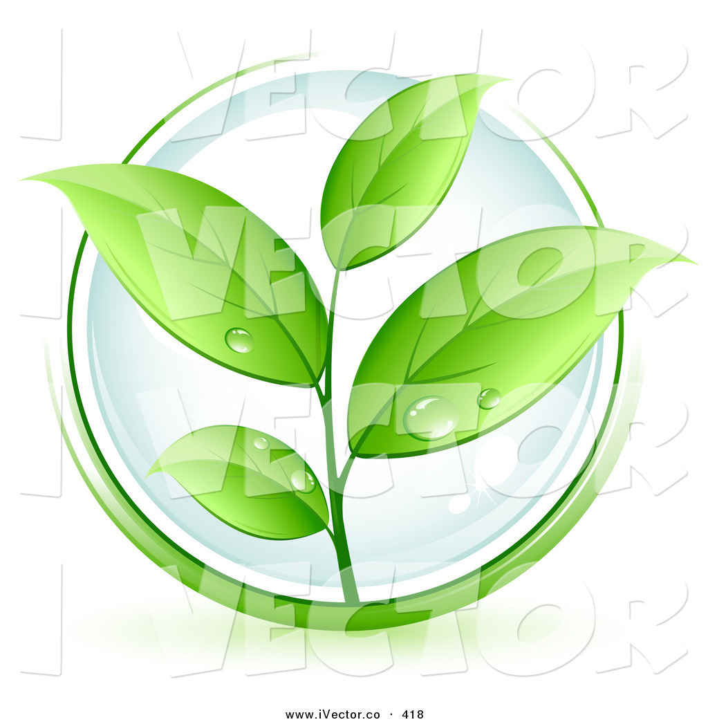 Green Plant with White Leaves