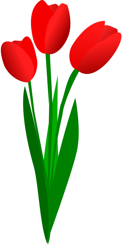 Red Tulips Clip Art Free