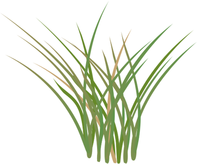 17 Symbol Of Free Vector Grass Images