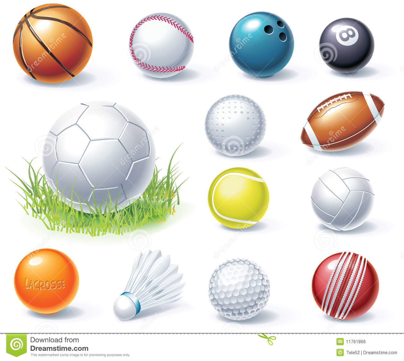 Sports Equipment Free Vector Icon