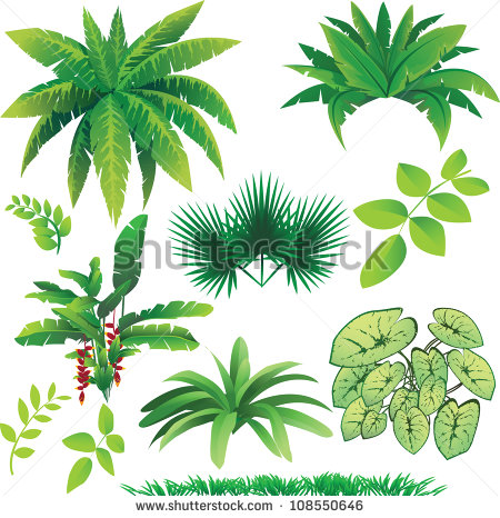 Vector Jungle Plants