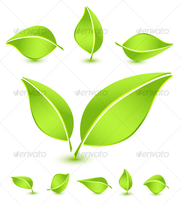 10 Flower Leaves Icon Images