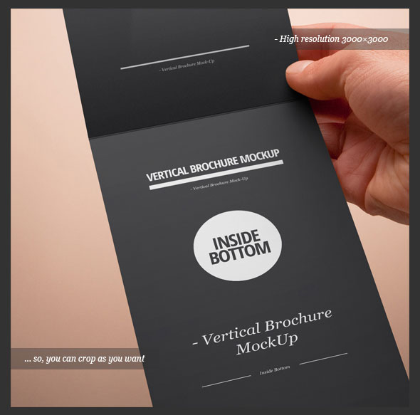 Vertical Fold Brochure Design PSD