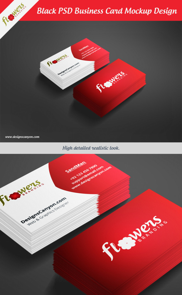 10 PSD Business Card Size Standard Business Card