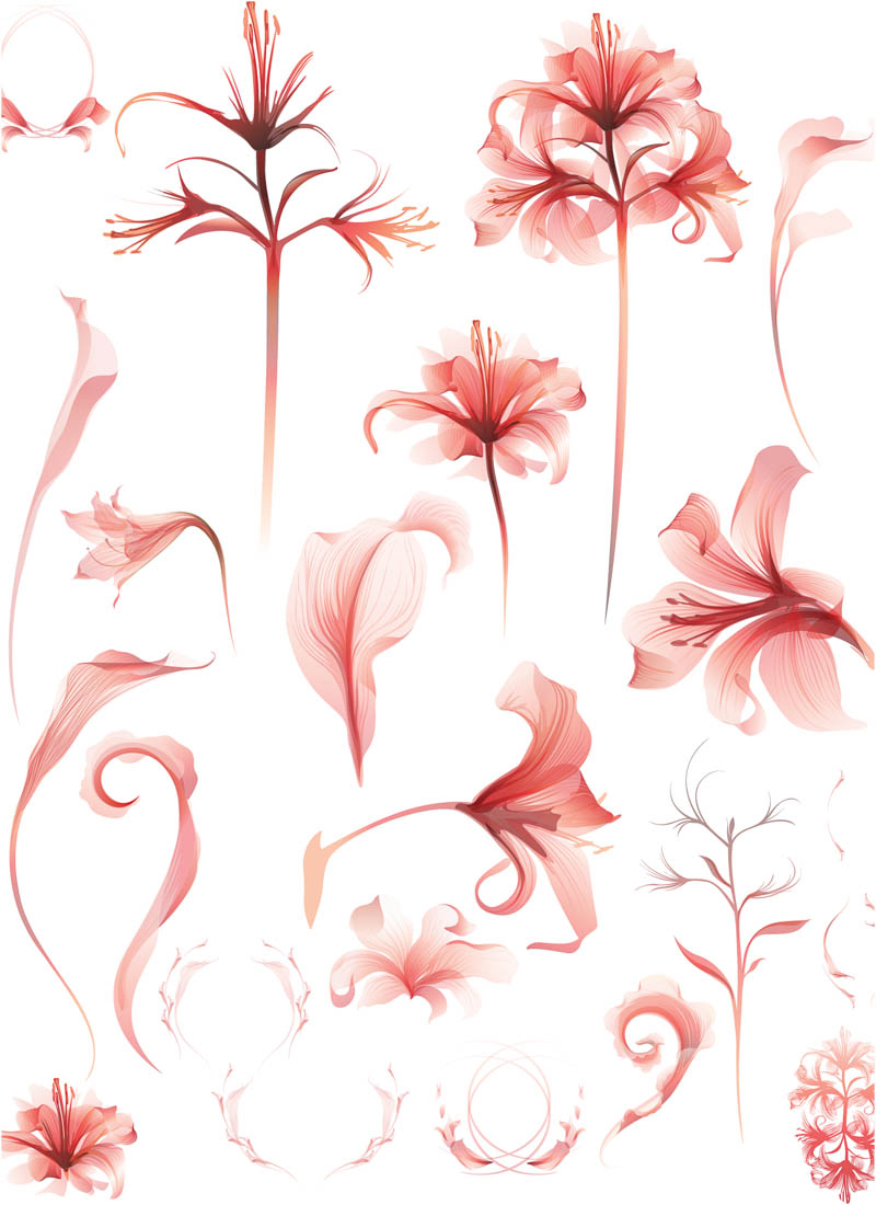 Flower Pink Vector Clip Art