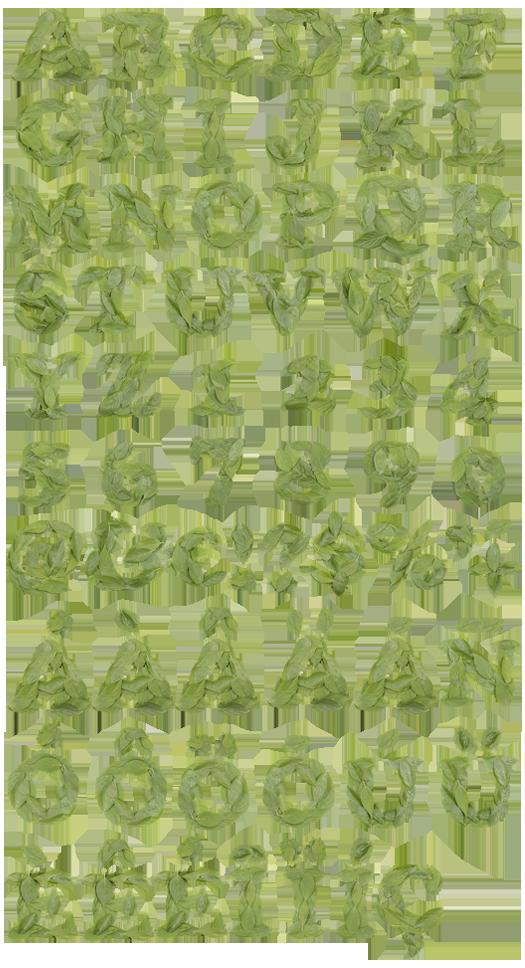 12 Leaf Letters Font Images