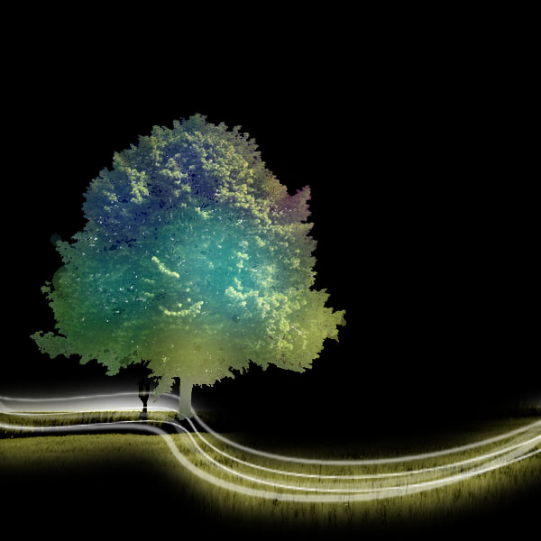Photoshop Trees