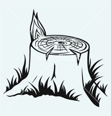 9 Tree Stump Vector Images