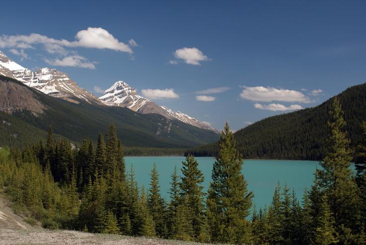 Alberta Canada Landscape