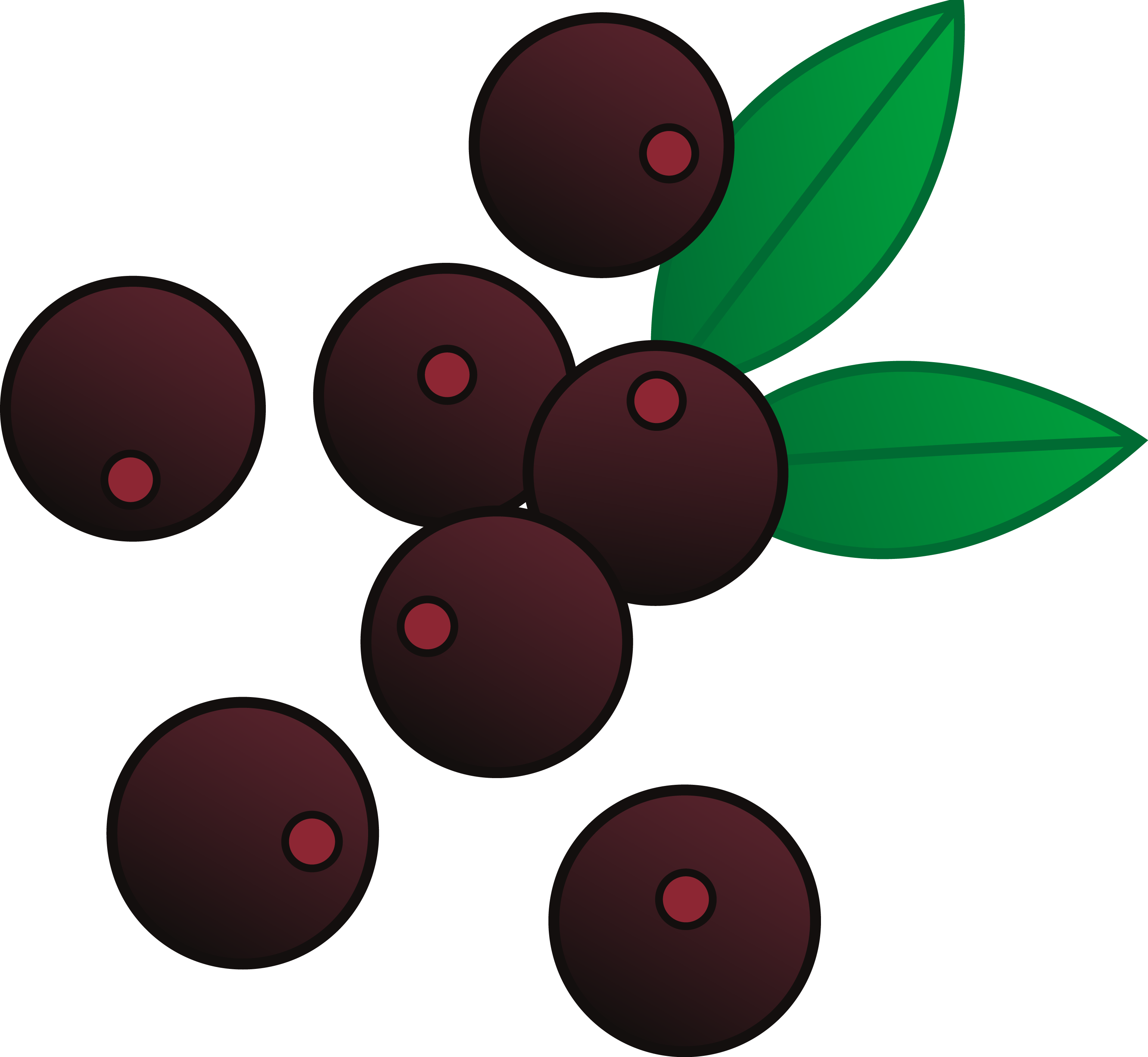 8 Acai Free Vector Images